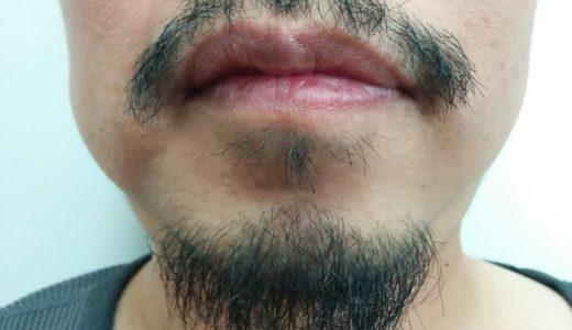 髭(ヒゲ)はどこまで伸びるのか?期間別